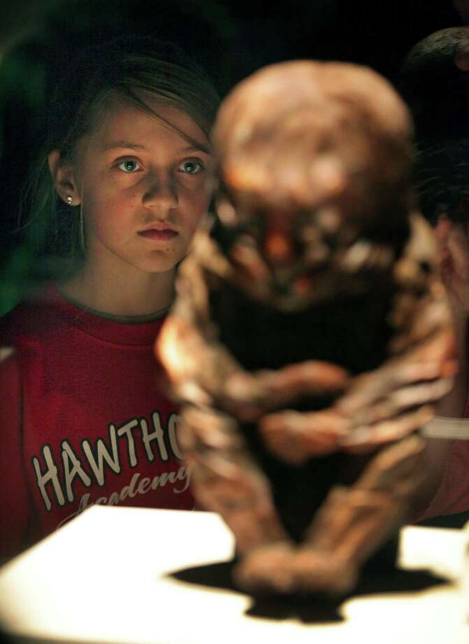 Alyssa Lewis, and other 6th-grade students from Hawthorne Academy tour the 'Mummies of the World' exhibit at The Witte Museum on Jan. 10, 2013.  The exhibit closes Jan. 27. Photo: Bob Owen, San Antonio Express-News / ©2013 San Antonio Express-News