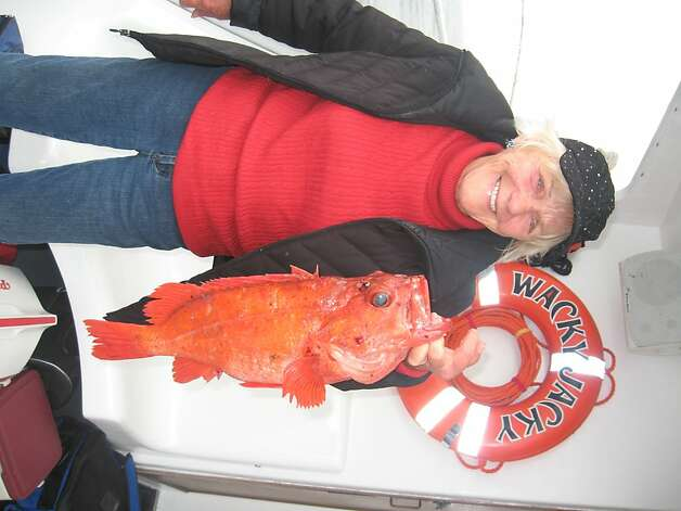 Jacqueline Douglas with rockfish offshore the San Francisco coast in 2012Photo courtesy Craig Hanson Photo: Courtesy Craig Hanson