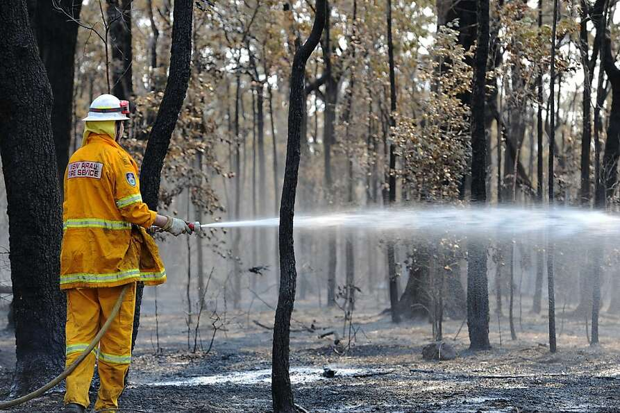A firefighter douses smoldering trees from the Deans Gap fire near Nowra on the south coast of Au