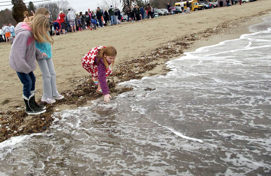 Kate Hodska, 9 of Monroe, tests the water before taking part in a polar plunge which was held to benefit two charities named for two victims of the Newtown tragedy, at Southport Beach in Southport, Conn. on Saturday January 12, 2013. Money raised goes to the Grace McDonnell Memorial Fund and the Glenn Atkinson Memorial Scholarship Fund. Photo: Christian Abraham / Connecticut Post