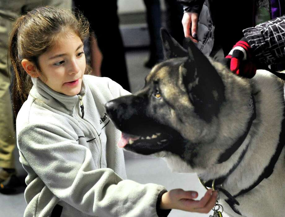 Ana Demecs, 9, pets Spartacus, a therapy dog who was part of the first therapy team to go to Newtown schools on the day of the Sandy Hook Elemantry School tragedy. They were at the Danbury arena for a special Newtown hockey game honoring the victims and first responders Saturday, Jan. 12, 2013. Photo: Michael Duffy / The News-Times