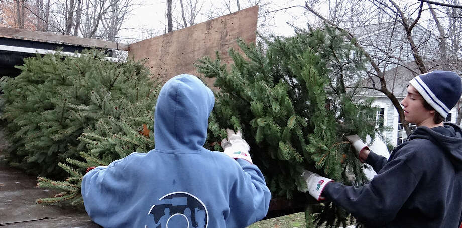 John and Brendan Wisniewski load a Christmas tree into the back of a truck in front of a home on Bayberry Ridge Road on Saturday as members of Boy Scout 39 collected the discarded trees around town.  WESTPORT NEWS 1/12/13 Photo: Mike Lauterborn / Westport News contributed