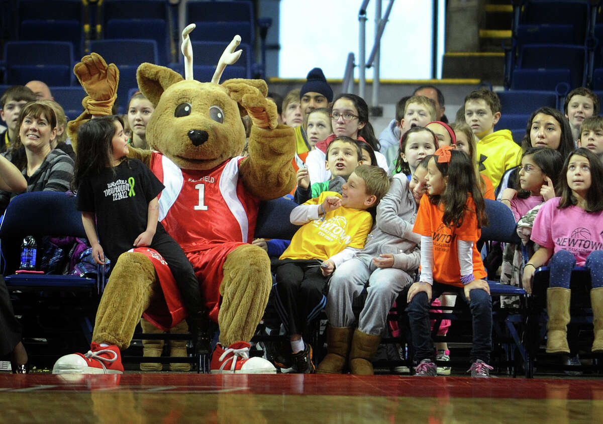 The Fairfield University mascot sits courtside with Newtown students for Fairfield's men's basketball matchup with Niagara at the Webster Bank Arena in Bridgeport on Sunday, January 13, 2013.