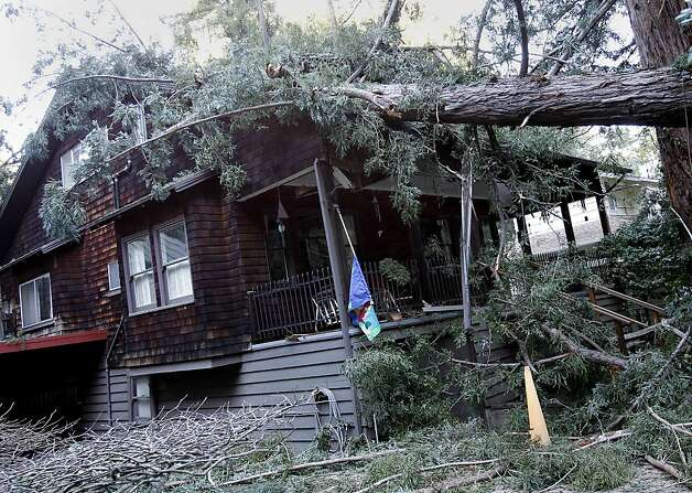 The fallen redwood tree rested above the porch of the home at 320 West Baltimore Avenue. A 120 foot redwood tree fell across West Baltimore Avenue in Larkspur Calif. Monday January 14, 2013 hitting a home at 320 West Baltimore Avenue.  No one was injured. Photo: Brant Ward, The Chronicle