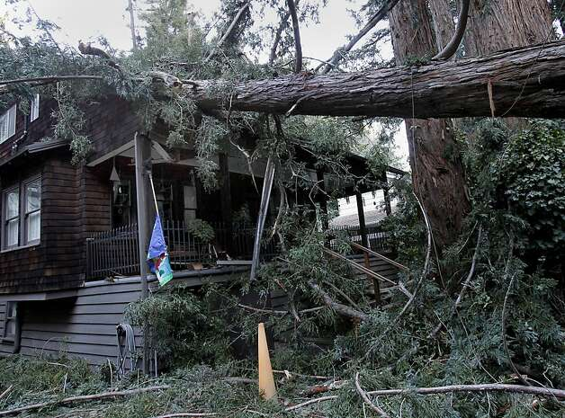 Neighbors described how the tree crashed down, with one home taking the full force. The homeowner was inside but unharmed. Photo: Brant Ward, The Chronicle