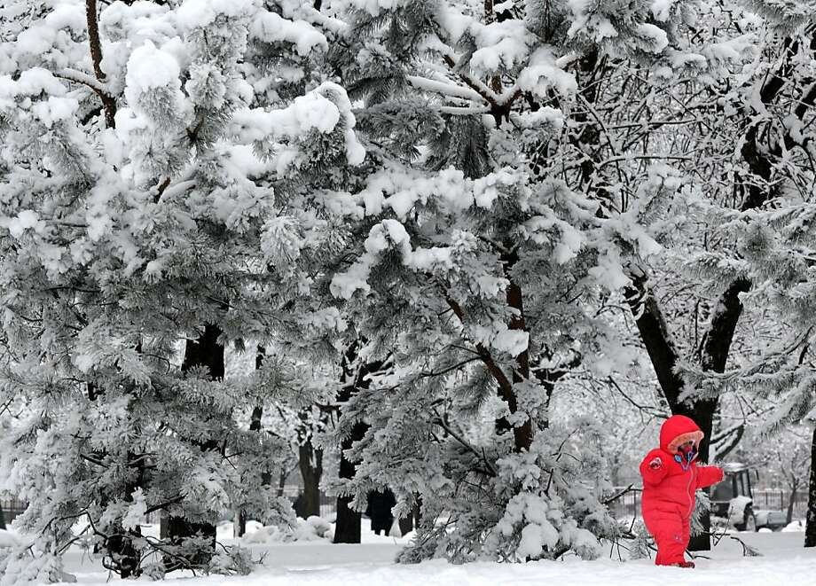 TOPSHOTS  A child walks in a snow clad park in the Belarus capital Minsk, on January 15, 2013. Snow fell today across Minsk as the temperatures dropped to -6 C (21 F). AFP PHOTO / VIKTOR DRACHEVVIKTOR DRACHEV/AFP/Getty Images Photo: Viktor Drachev, AFP/Getty Images