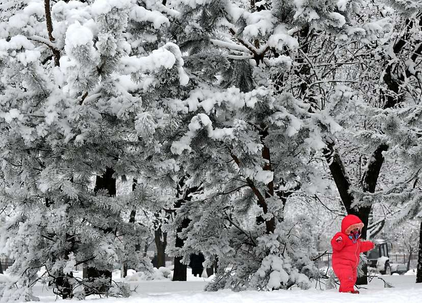 TOPSHOTS  A child walks in a snow clad park in the Belarus capital Minsk, on January 15, 2013. Snow