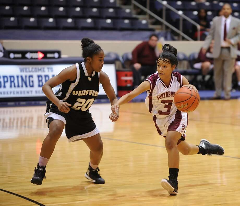 Northbrook's Angela Ayala (3) and the Raiders have shown improvement this season, already matching the team's win total from the previous season. Photo: Eddy Matchette, Freelance / Freelance