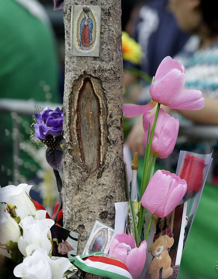 In this July 15, 2012 photo, the opening of a tree's bark is surrounded by flowers at the site where believers say the image of the Virgin of Guadalupe appeared in West New York, N.J.  Believers, who pray in front of the tree nightly, say the outline of the Virgin of Guadalupe appeared on the tree on July 5, 2012, and they are collecting money in hopes of building a glass shrine to protect the image. (AP Photo/Julio Cortez) Photo: Julio Cortez, Associated Press