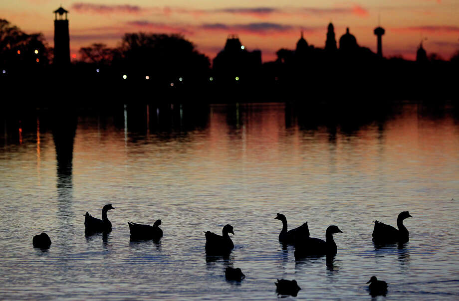 Ducks are silhouetted by the breaking dawn on Woodlawn Lake. Photo: John Davenport/Express-News / ©San Antonio Express-News/Photo Can Be Sold to the Public