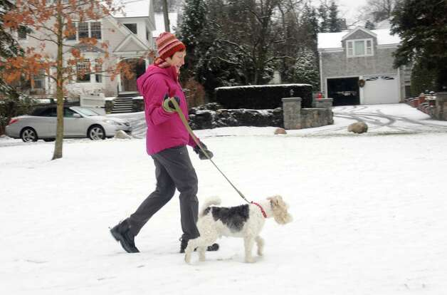 Janine Whitley walks in the snow with Nick, a friend' s dog at Binney Park, in Old Greenwich, Conn., Wednesday, Jan. 16, 2013. Photo: Helen Neafsey / Greenwich Time