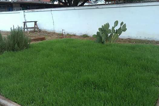 Image Result For Home And Garden Blanketsa