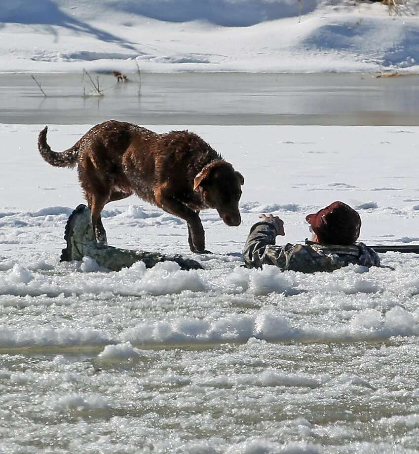 Go back, boy!A hunter waves his dog away as he waits to be rescued after crashing through ice on the Colorado River in Mesa County, Colo. The man, who fell in while retrieving a goose he shot, spent about 30 minutes in the freezing water before Grand Junction and Lower Valley firefighters pulled him out. Photo: Dean Humphrey, Associated Press