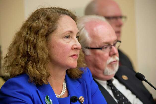 Rep. Elizabeth Esty, D-Conn., who represents Newtown, Conn., and Rep. Ron Barber, D-Ariz., who took over for Rep. Gabby Giffords who was severely injured in a shooting in Tuscon, Ariz., sit together at a special House Democratic Steering and Policy Committee hearing on gun violence on Capitol Hill in Washington, Wednesday, Jan. 16, 2013. The lawmakers heard from a witness panel that included Newtown, Conn. School Superintendent Janet Robinson, Emily Nottingham, mother of Tucson shooting victim Gabe Zimmerman, Chaska, Minnesota Police Chief Scott Knight, and Philadelphia Mayor Michael Nutter. Photo: J. Scott Applewhite, AP Photo/J. Scott Applewhite / Associated Press