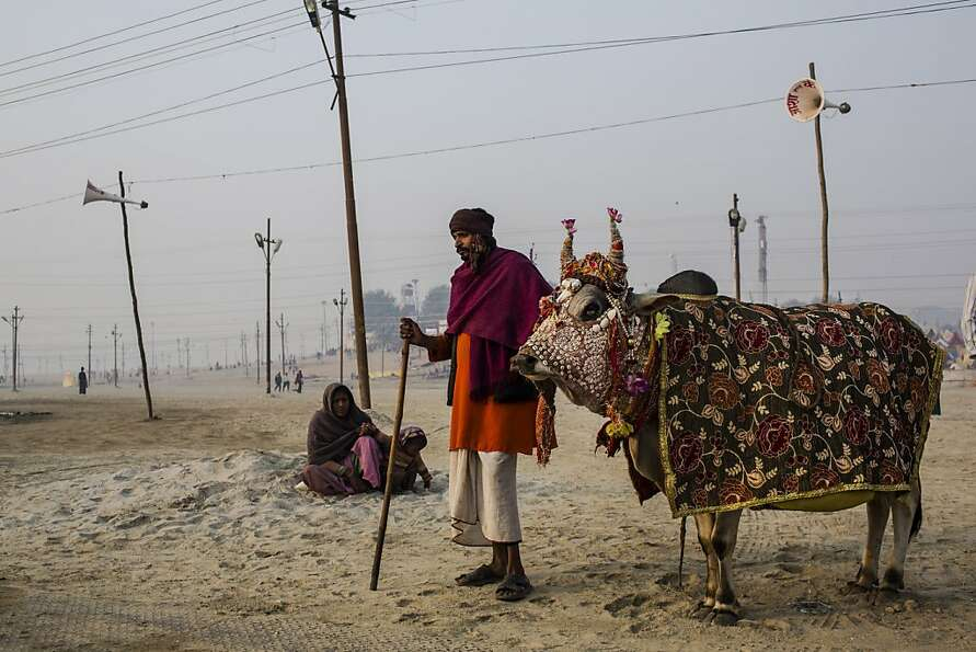 A man begs for donations as he stands with a cow on the banks of Sangam, the confluence of the holy