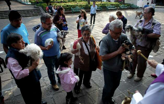People have their pets blessed by a Catholic priest during the Day of Saint Anthony of Abad in Mexico City, Thursday, Jan. 17, 2013. The yearly ceremony to ensure the health of their livestock and pets by having them sprinkled with holy water and sanctified is known as the Benediction of Beasts. Photo: Eduardo Verdugo, Associated Press / AP