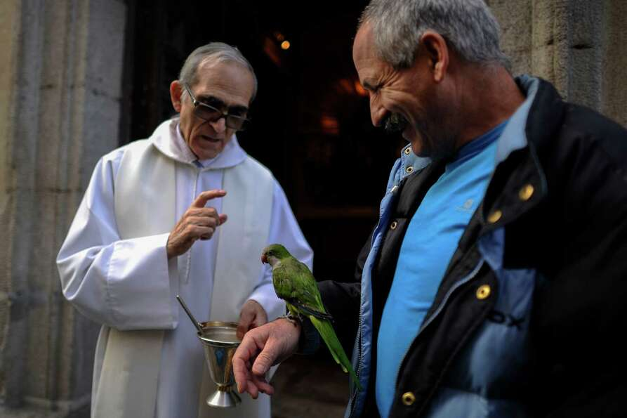 A parrot is blessed by a priest at San Anton church in Madrid on Saint Anthony's Day, on January 17,