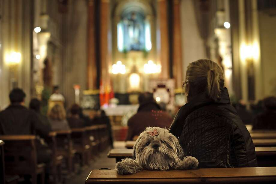The sermon on the mutt: A pooch waiting to be blessed is more interested in what's going on in the back pews than in the Mass at San Anton Church in Madrid. Photo: Daniel Ochoa De Olza, Associated Press