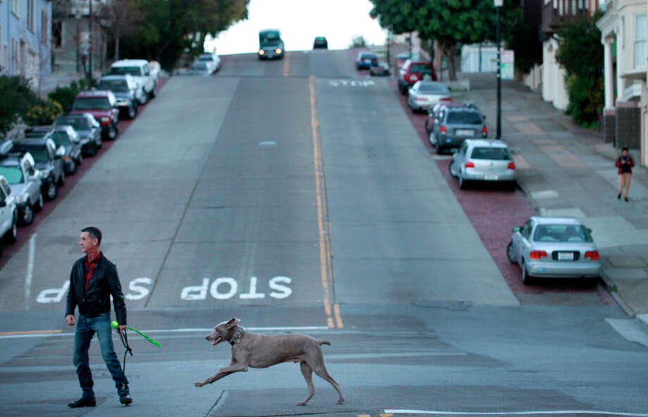 Cal Meeder leads his  weimaraner, Clyde, who received a pair of Neuticles 9 years ago, to San Francisco's Dolores Park. Photo: Mike Kepka, The Chronicle / ONLINE_YES