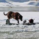 A hunter gestures his dog away today as he waits in the Colorado River for rescue on Tuesday in Mesa County, Colo. The man fell in while retrieving a goose he shot. Grand Junction Fire Department and Lower Valley Fire Department responded to the scene to rescue the man, who reportedly had been in the water for nearly 30 minutes. (AP Photo/The Grand Junction Daily Sentinel, Dean Humphrey)