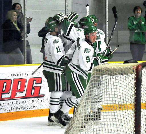 Danbury Whalers celebrate the first Whalers goal against the Danville Dashers Sunday, Jan. 20, 2013 in Danbury Photo: Michael Duffy