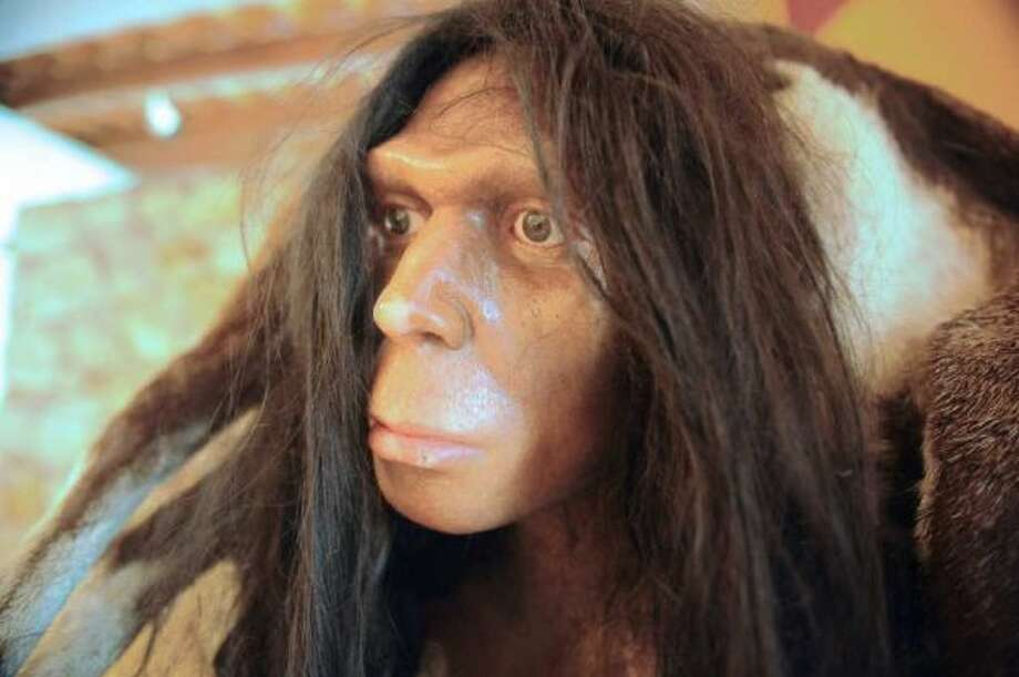Branching outModern humans were known to have hooked up with Neanderthals.
