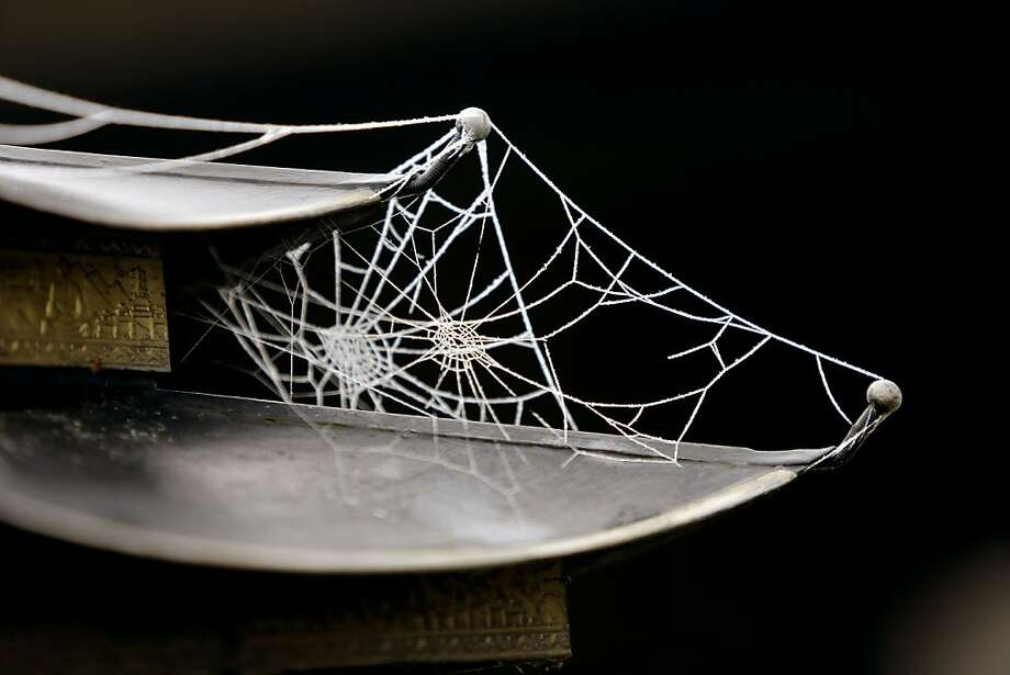 Spider webs coated in icefrom overnight freezing fog cling to a pagoda-style lamp in King City, Ore. Photo: Don Ryan, Associated Press
