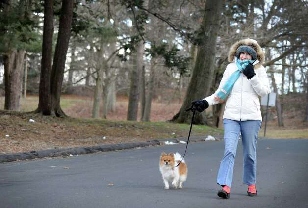 Barbara Gall, of Bridgeport, walks her dog, Ivana, through Beardsley Park Tuesday, Jan. 22, 2013.  The pair had the park to themselves, Gall said, due to the cold temperature. Photo: Autumn Driscoll / Connecticut Post