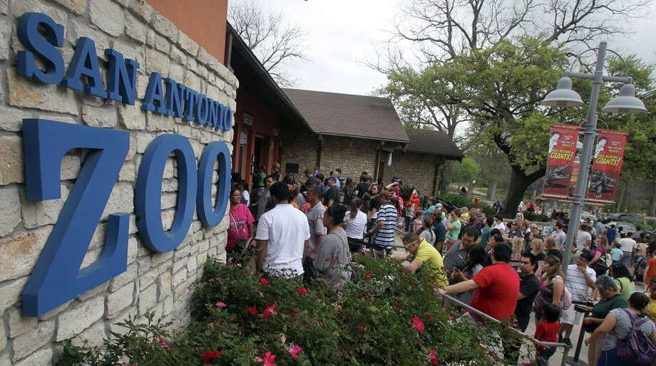Explore the San Antonio Zoo. sazoo-aq.org Photo: JOHN DAVENPORT, SAN ANTONIO EXPRESS-NEWS / SAN ANTONIO EXPRESS-NEWS (Photo can be sold to the public)