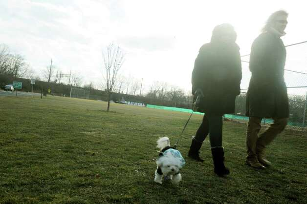 M.J. Rose and Doug Scofield, of Greenwich, bundled up with their dog Winka in Binney Park, in Greenwich, Conn., Wednesday, Jan. 23, 2013. Local weather is cold with temperatures in the teens and mostly cloudy with chance of snow. Photo: Helen Neafsey / Greenwich Time