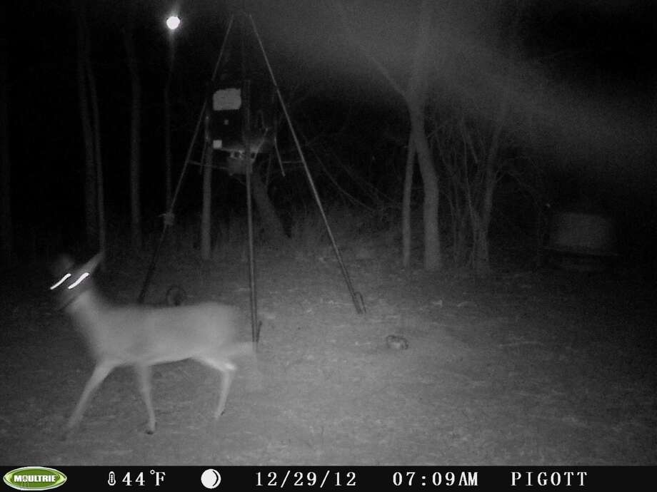 Stills from video from a deer cam, taken near Nixon Dec. 29, 2012. Mutual UFO Network says the triangular lights might be signs of a UFO. / Copyright2008
