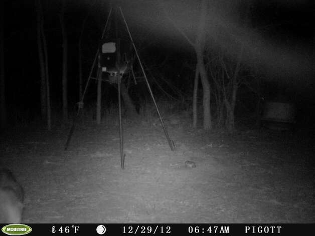 Stills from video from a deer cam, taken near Nixon Dec. 29, 2012. Mutual UFO Network says the triangular lights might be signs of a UFO. Photo: Courtesy Photo / Copyright	2008