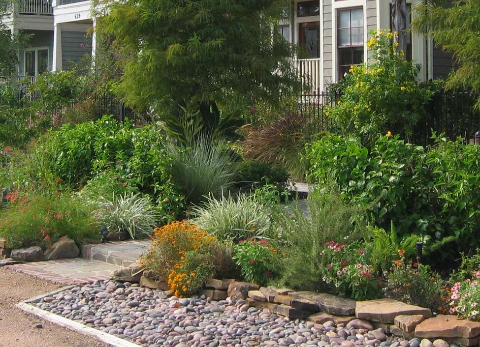In The Garden With Urban Harvest Yards Landscaped With Native