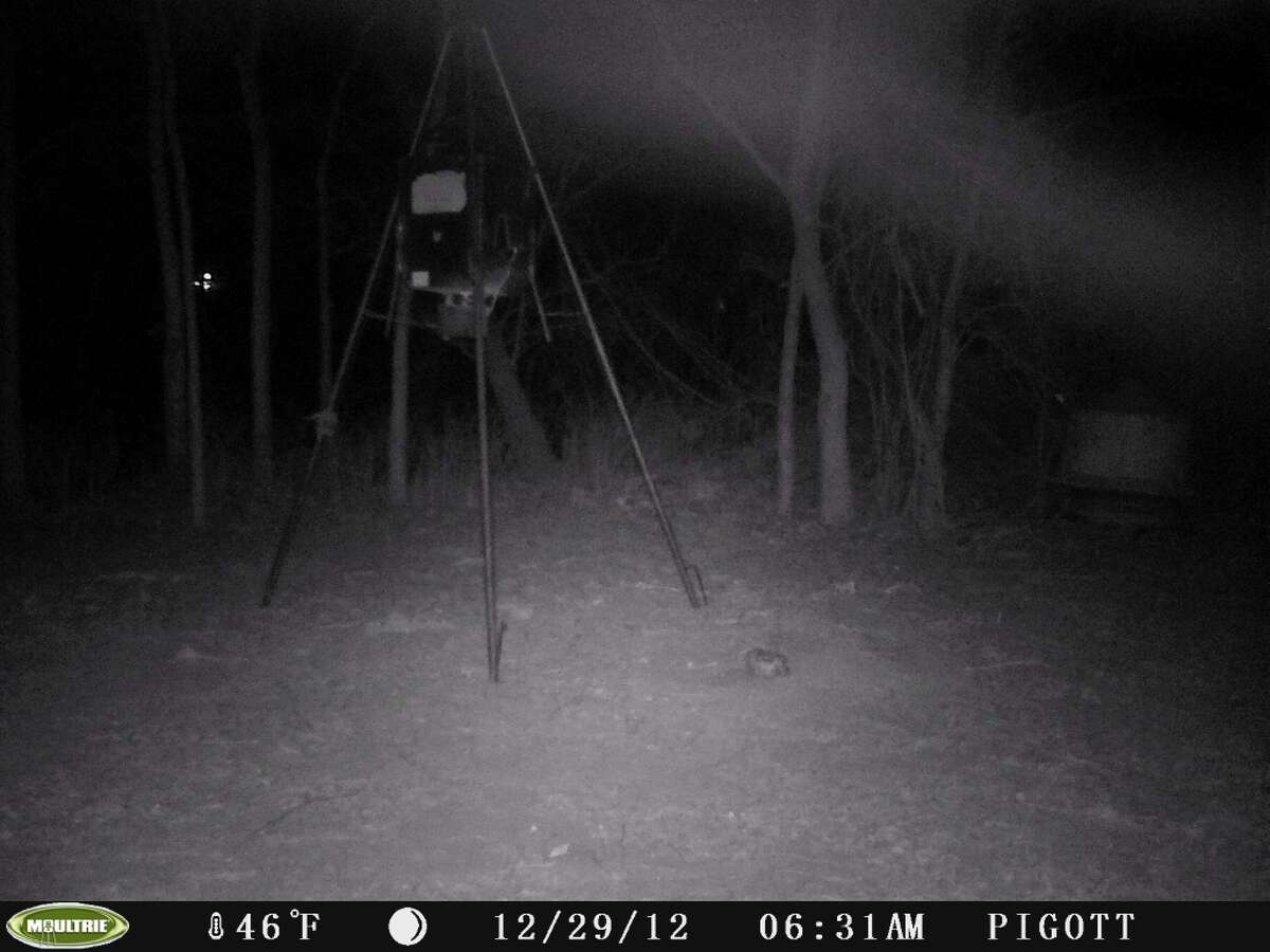 Stills from video from a deer cam, taken near Nixon, Texas on Dec. 29, 2012. Mutual UFO Network says the triangular lights might be signs of a UFO.