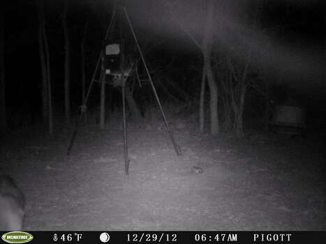 Stills from a deer cam, taken near Nixon, Texas Dec. 29, 2012. An unusual mist appears near ground level. / Copyright	2008