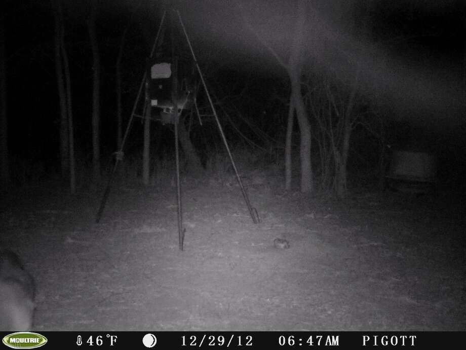 Stills from a deer cam, taken near Nixon, Texas Dec. 29, 2012. An unusual mist appears near ground level. / Copyright2008