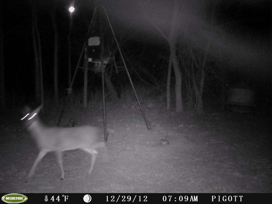 Stills from a deer cam, taken near Nixon, Texas on Dec. 29, 2012. Mutual UFO Network has raised suspicions about the bright orb seen in the sky near the location of the light triangle of the first photo. / Copyright	2008