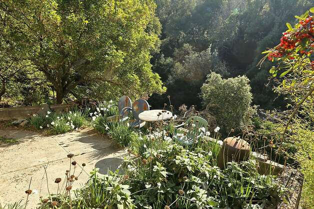 The lower garden overlooks mature trees and sloping hills. Photo: Liz Rusby