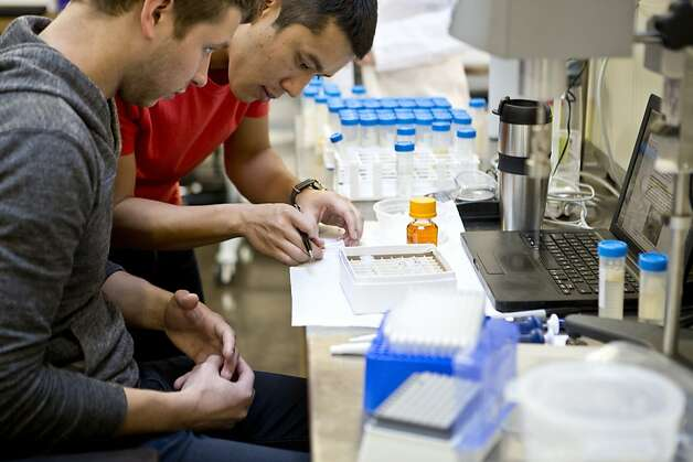 Associate food scientists Trung Hoang (top) and Andrew Teneyck (far left) work on experiment researching dressings and sauces at Beyond Eggs laboratory on Friday, January 25, 2013 in San Francisco, Calif. Photo: Beck Diefenbach, Special To The Chronicle