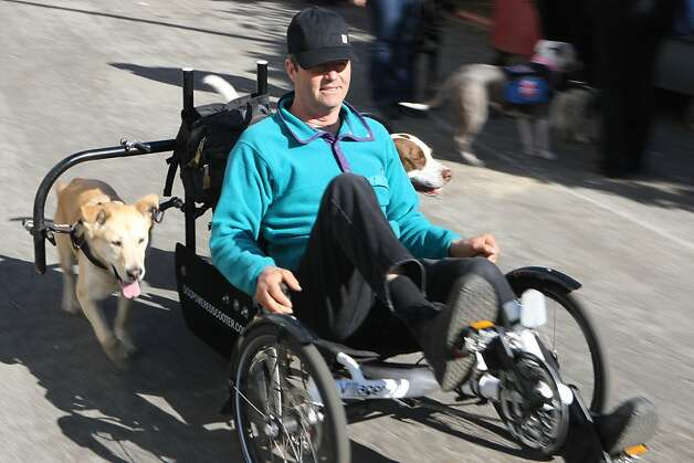 Mark Schuette, a building designer from Oregon, demonstrates his dog-powered scooter. Photo: Jessica Olthof, The Chronicle