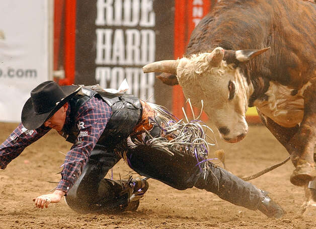 Matt Austin of Wills Point crawls away from Smokin Gun after his ride during the Xtreme Bulls on Feb. 13, 2006, at the San Antonio Stock Show & Rodeo held at the AT&T Center. Austin went on to win the event. Photo: Edward A. Ornelas, San Antonio Express-News