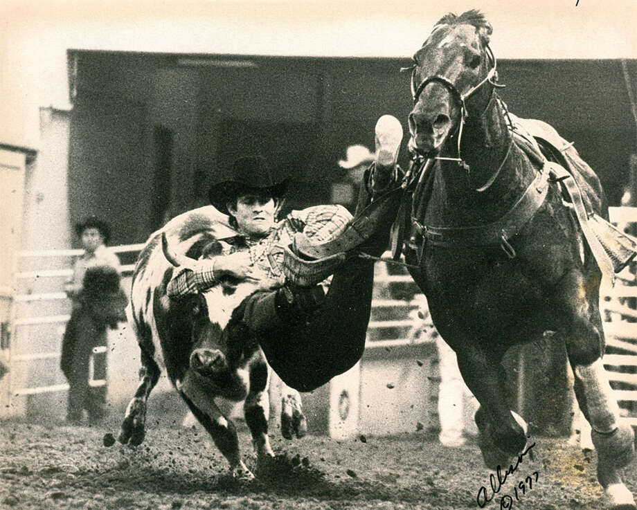 A cowboy competes in steer wrestling at the San Antonio Stock Show & Rodeo in 1977. Photo: San Antonio Express-News File Photo