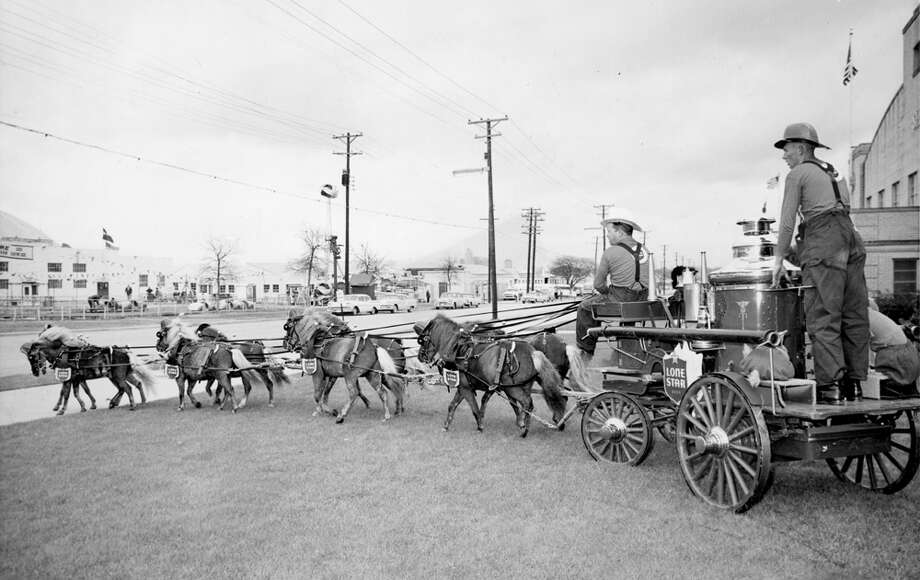 A Lone Star beer wagon is hauled by a team of horses at the San Antonio Stock Show & Rodeo in this undated photo. Photo: San Antonio Express-News File Photo