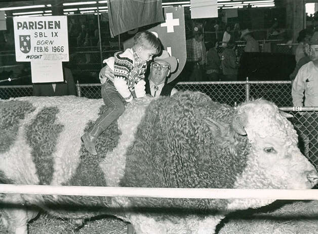 A boy checks out the livestock at the San Antonio Stock Show & Rodeo in 1971. Photo: San Antonio Express-News File Photo