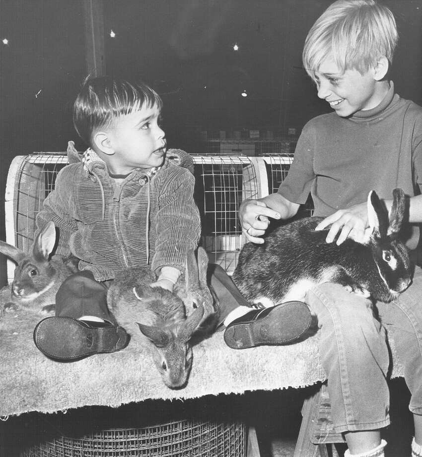 Children play with rabbits at the livestock show at the San Antonio Stock Show & Rodeo on Feb. 16, 1970. Photo: San Antonio Express-News File Photo