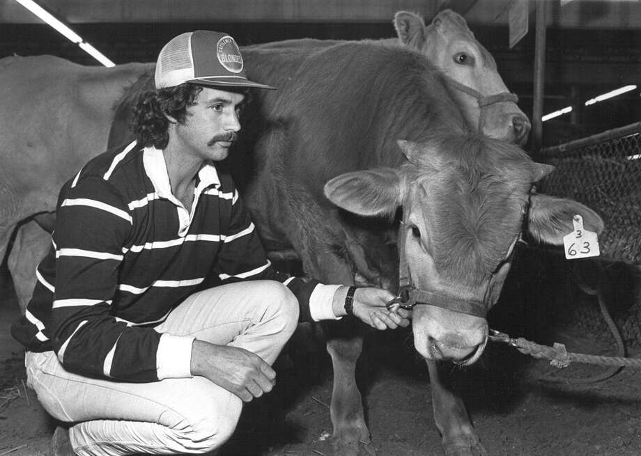 John Dowling poses with his cow Tasmania at the 1984 San Antonio Stock Show & Rodeo. Photo: San Antonio Express-News File Photo