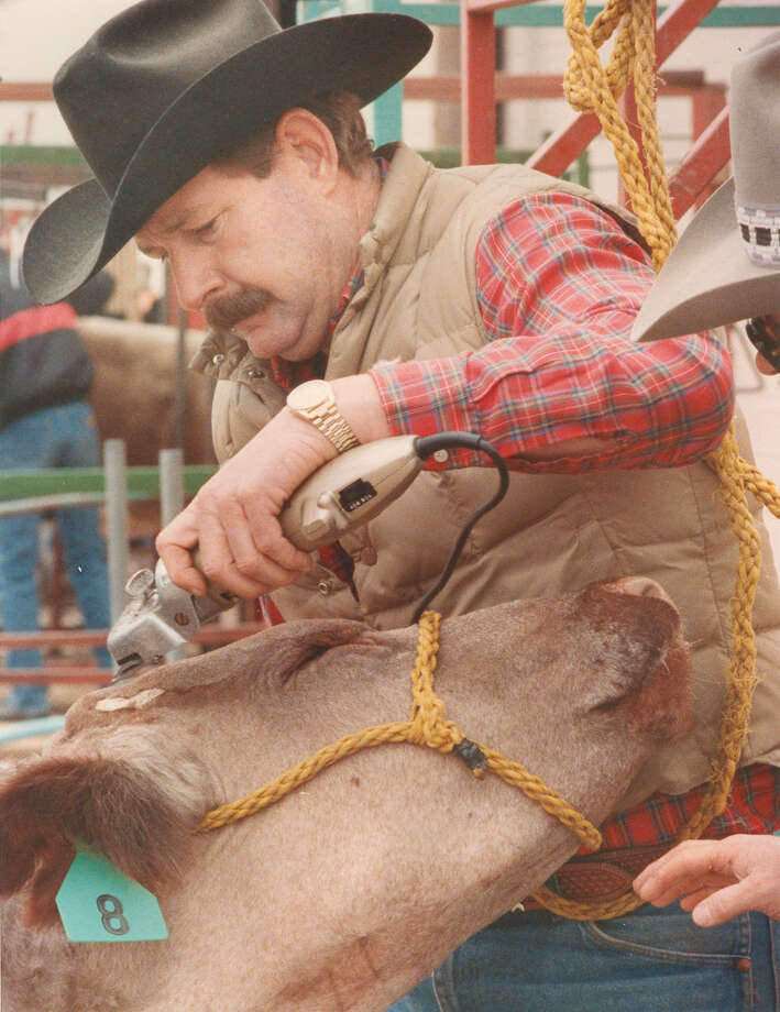 Robert Harris trims an 18-month-old shorthorn steer for 12-year-old Corey Hines of Claude at the San Antonio Stock Show & Rodeo on Feb. 10, 1989. Photo: San Antonio Express-News File Photo