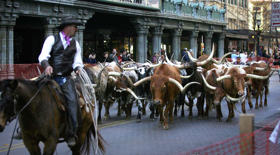 Longhorns, seen in front of the Majestic Theater, are driven down Houston Street in 2008. Photo: Bob Owen, SAN ANTONIO EXPRESS-NEWS / SAN ANTONIO EXPRESS-NEWS
