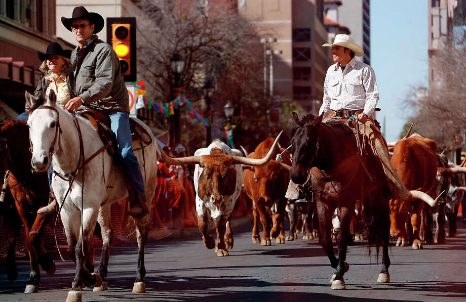 Cowboys lead 35 head of cattle down Houston Street in 2009. Photo: Kin Man Hui, San Antonio Express-News / San Antonio Express-News