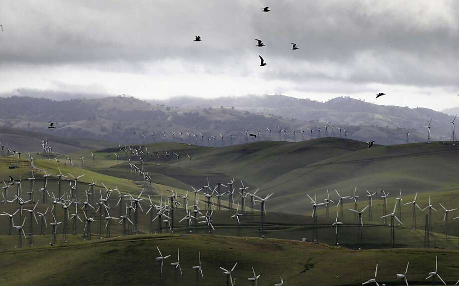 The number of eagles, kestrels, burrowing owls and red-tailed hawks killed each year by flying into the wind generators at Altamont Pass in Alameda County has fallen roughly 50 percent since 2005, a study shows. Photo: Michael Macor, The Chronicle